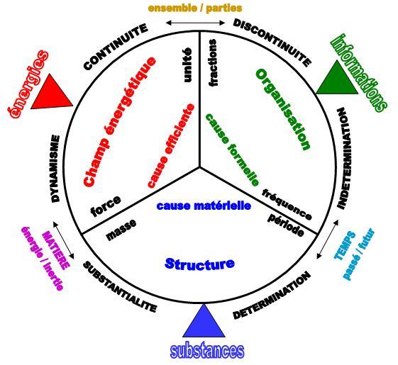 Philosophie holistique et modèle systémique - Page 2 MIF_1